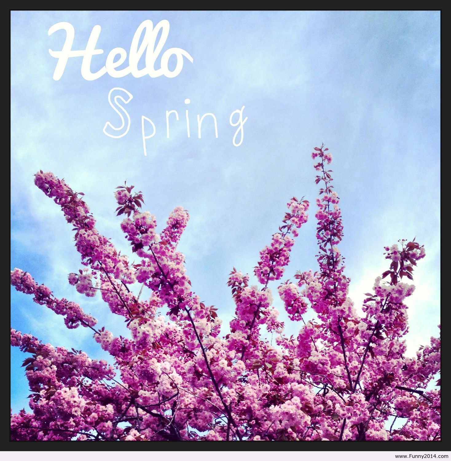Hello-spring-time-quote-1