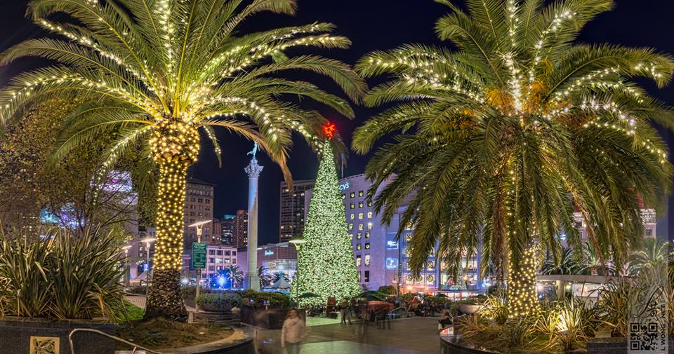 Beautiful Photo of our San Francisco Christmas Tree in Union Square taken by my good friend and talented photographer Larry Wong.